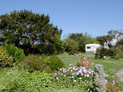 Cornwall Campsite - The Secret Garden