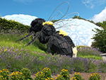 Eden Project - Bee Sculpture - July 2014