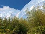 Eden Project - Biomes - July 2014