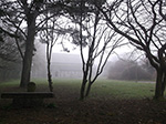 Misty Day - St Johns In The Fields - St Ives - March 2014