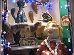 Christmas Window - Fore Street St Ives - I Should Coco - December 2013