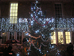 Christmas Lights - St Ives Guildhall - December 2013