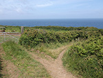St Ives - Hellesveor - Path to the Coast