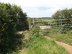 St Ives - Hellesveor - Field Path - Stile